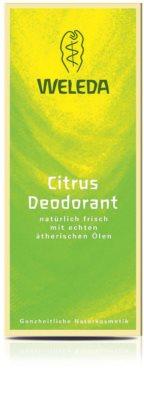 Weleda Citrus deodorant 2