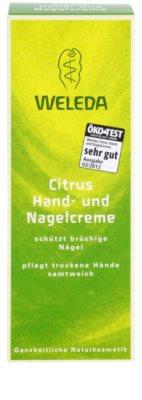 Weleda Citrus крем для рук та нігтів 3