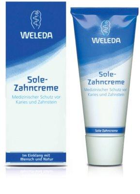 Weleda Dental Care Zahnpasta mit Meersalz 1
