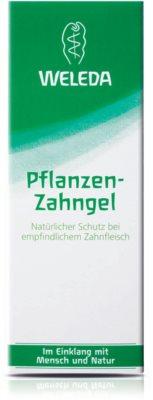 Weleda Dental Care Zahngel 2
