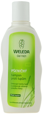 Weleda Hair Care szampon przeniczny przeciw łupieżowi