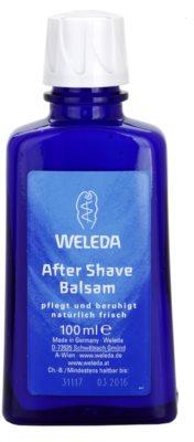 Weleda Men balsam aftershave