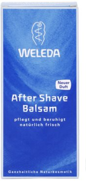 Weleda Men After Shave Balsam 3