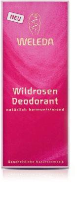 Weleda Rose deodorant 2