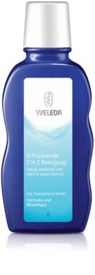 Weleda Cleaning Care Reinigungstonikum 2in1