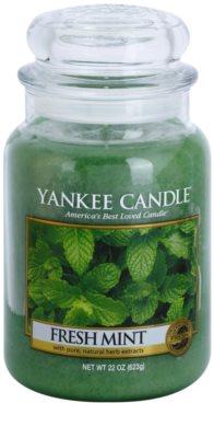 Yankee Candle Fresh Mint ароматна свещ   Classic голяма