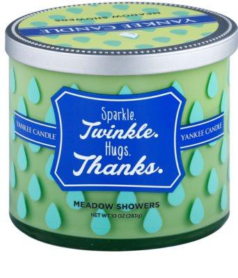 Yankee Candle Meadow Showers Duftkerze    (Sparkle. Twinkle. Hugs. Thanks.)
