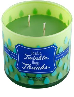 Yankee Candle Meadow Showers ароматна свещ    (Sparkle. Twinkle. Hugs. Thanks.) 1