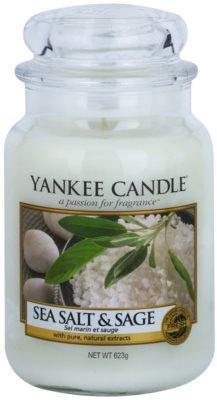 Yankee Candle Sea Salt & Sage vela perfumado  Classic grande