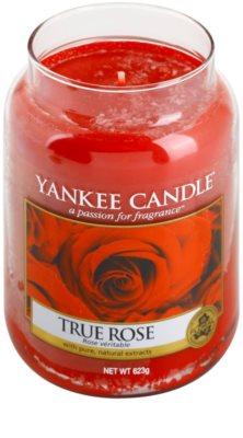 Yankee Candle True Rose Duftkerze   Classic groß 1