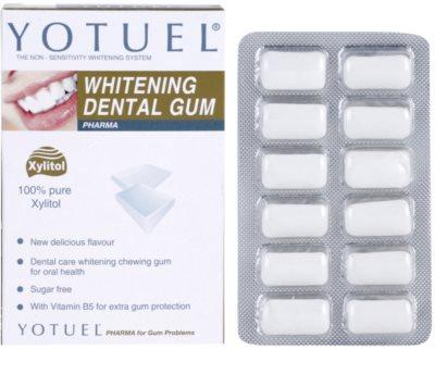Yotuel Pharma B5 žvýkačky s bělicím účinkem 1