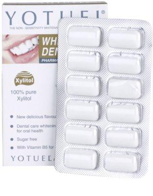 Yotuel Pharma B5 žvýkačky s bělicím účinkem