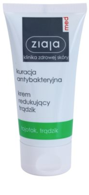 Ziaja Med Antibacterial Care легкий крем проти акне, регулюючий утворення себіуму