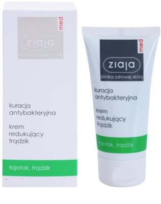 Ziaja Med Antibacterial Care creme leve para regularizar a produção de sebo da pele com acne 1
