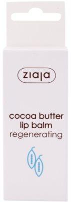 Ziaja Cocoa Butter balzám na rty s kakaovým máslem 2
