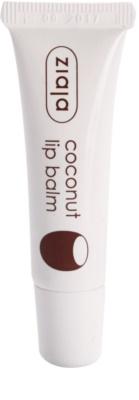 Ziaja Coconut Lippenbalsam