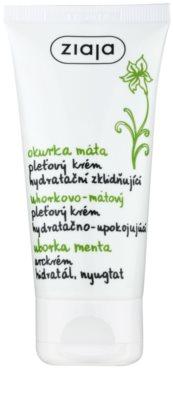 Ziaja Cucumber crema pentru ten  cu efect de hidratare