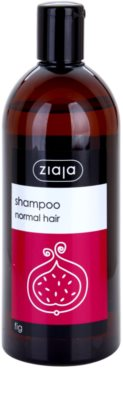 Ziaja Family Shampoo szampon do włosów normalnych