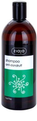 Ziaja Family Shampoo шампунь проти лупи
