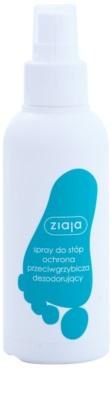 Ziaja Foot Care spray przeciwgrzybiczny do nóg
