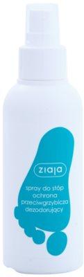 Ziaja Foot Care протигрибковий спрей для ніг