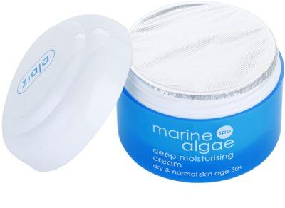 Ziaja Marine Algae creme de hidratação extra para pele normal e seca 1