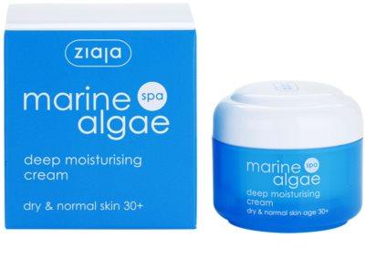 Ziaja Marine Algae creme de hidratação extra para pele normal e seca 3