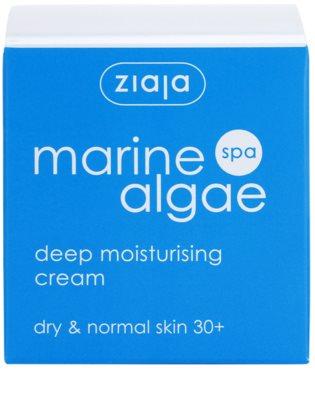 Ziaja Marine Algae creme de hidratação extra para pele normal e seca 4