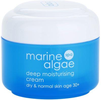 Ziaja Marine Algae creme de hidratação extra para pele normal e seca
