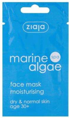 Ziaja Marine Algae hidratáló maszk normál és száraz bőrre