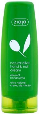 Ziaja Natural Olive creme para mãos e unhas