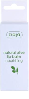 Ziaja Natural Olive odżywczy balsam do ust z ekstraktem z oliwek 3