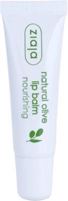 Ziaja Natural Olive nährender Lippenbalsam mit Auszügen aus Oliven