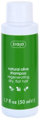 Ziaja Natural Olive регенериращ шампоан  за суха коса