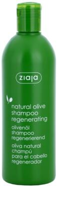 Ziaja Natural Olive regeneráló sampon minden hajtípusra