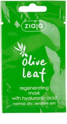 Ziaja Olive Leaf maseczka regenerująca