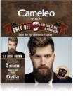 Delia Cosmetics Cameleo Men одноразова фарба для миттєвого зафарбовування сивини