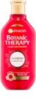 Garnier Botanic Therapy Cranberry šampon pro ochranu barvených vlasů