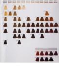 Goldwell Topchic culoare par
