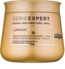 L'Oréal Professionnel Série Expert Absolut Repair Lipidium maseczka regenerująca do bardzo zniszczonych włosów