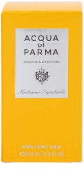Acqua di Parma Colonia Colonia Assoluta Baume après-rasage pour homme 100 ml