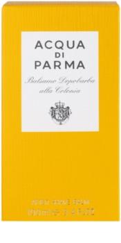 Acqua di Parma Colonia After Shave Balsam Herren 100 ml