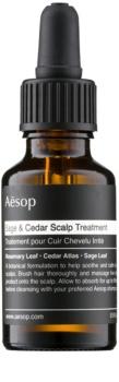Aēsop Hair Sage & Cedar tratamento hidratante para antes da lavagem