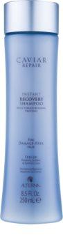 Alterna Caviar Repair Shampoo für augenblickliche Regeneration