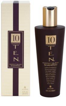 Alterna Ten vyživujúci šampón pre obnovu a posilnenie vlasov bez sulfátov