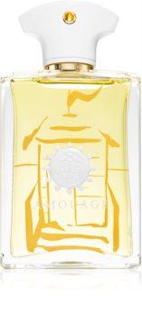 Amouage Beach Hut eau de parfum pentru barbati 100 ml