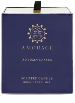Amouage Autumn Leaves candela profumata 195 g