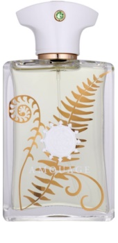 Amouage Bracken parfumovaná voda pre mužov 100 ml