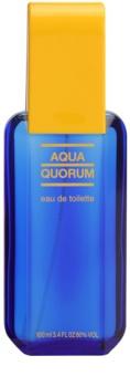 Antonio Puig Aqua Quorum Eau de Toilette voor Mannen 100 ml