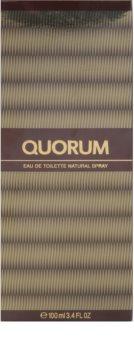 Antonio Puig Quorum Eau de Toilette for Men 100 ml